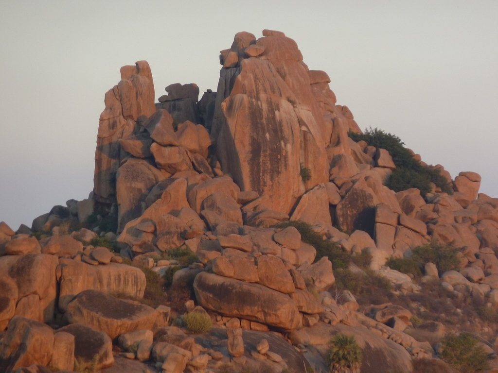 roccia mista gesso e corteccia