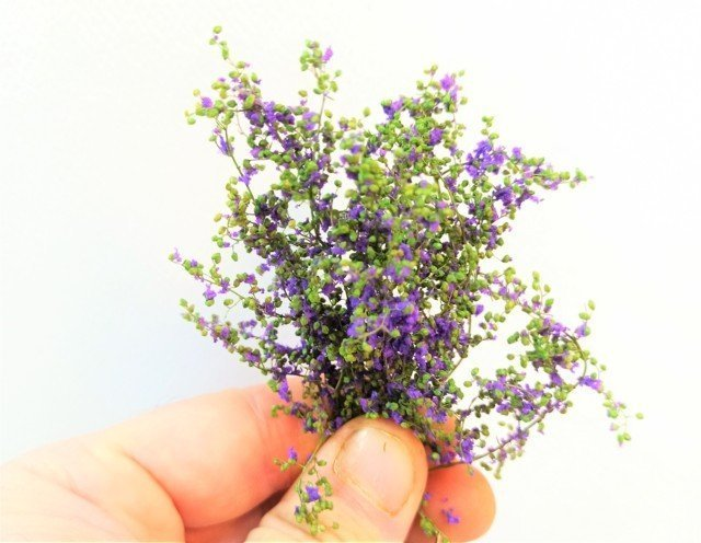 Light Green stabilized leaf bush with Lavender Violet flowers MINIPACK