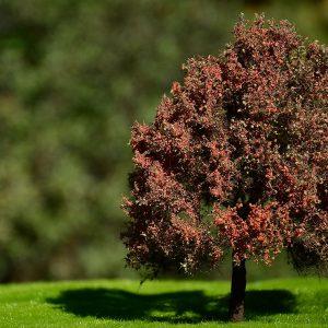 Autumn oak 1/120,1/87 – 14/16cm – DJ2